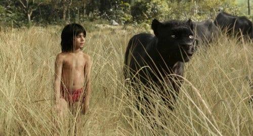 The Jungle Book - Mowgli & Bagheera