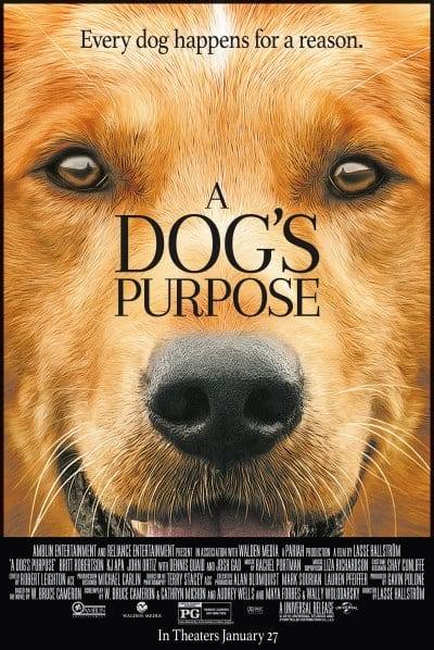 A Dog S Purpose Full Movie Theaters